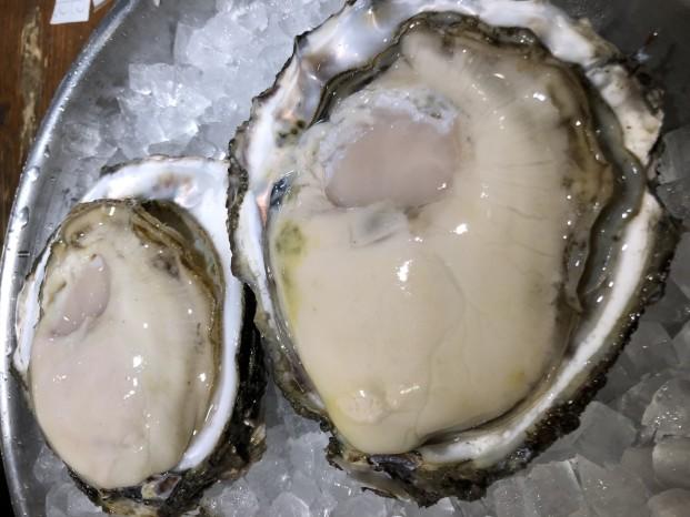 天然岩牡蠣の話