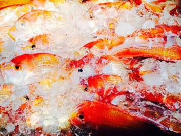 FISH HOUSEの甘鯛の話