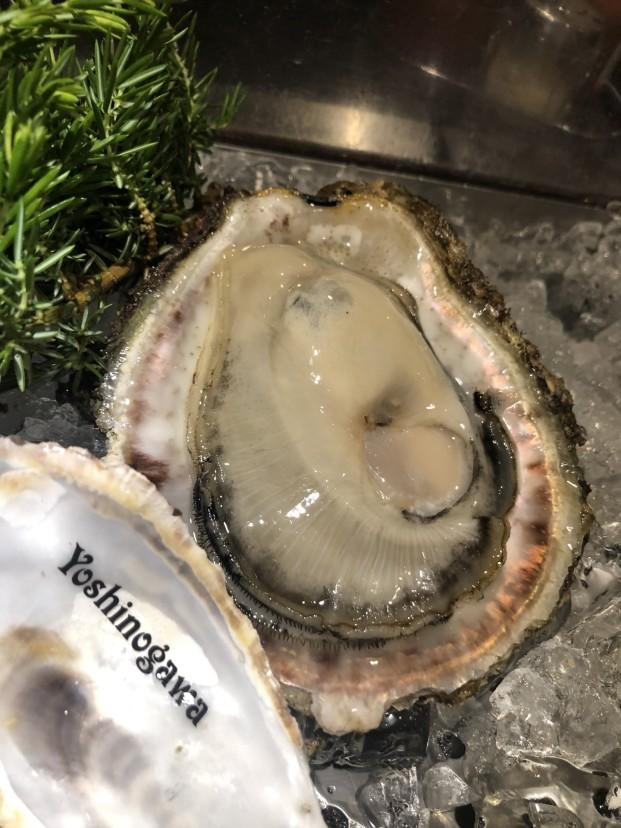 2019年の岩牡蠣の話