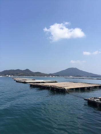 糸島の牡蠣の話