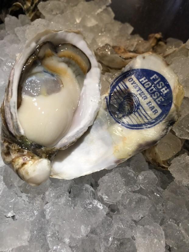 牡蠣の繁殖の話