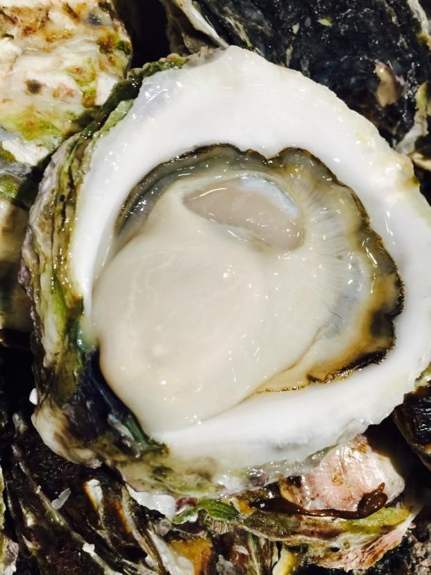 隠岐島より春の岩牡蠣 『春香』入荷❗️
