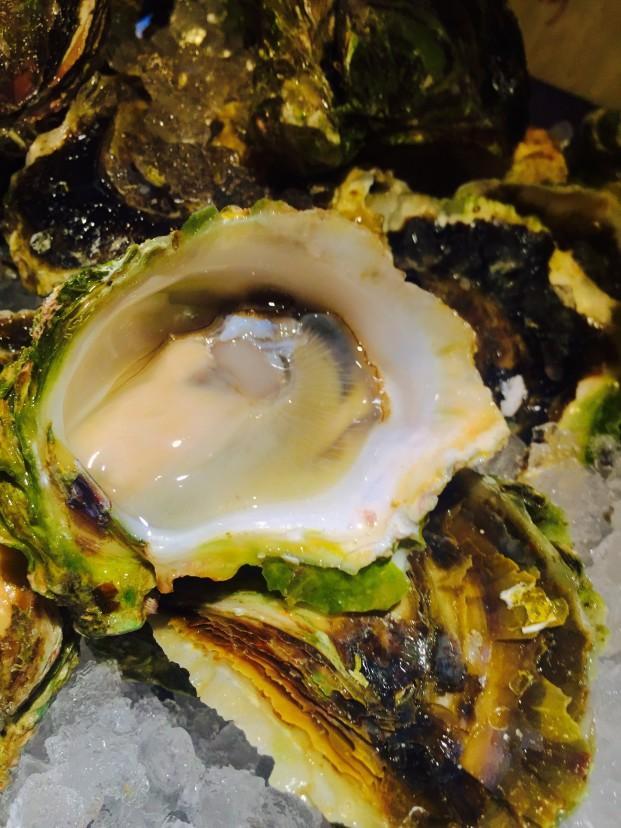 九十九島の岩牡蠣の話