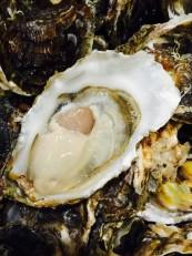 糸島サウンド(岩牡蠣)