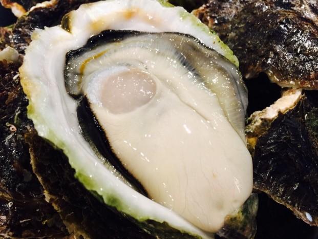 宇和島(岩牡蠣)