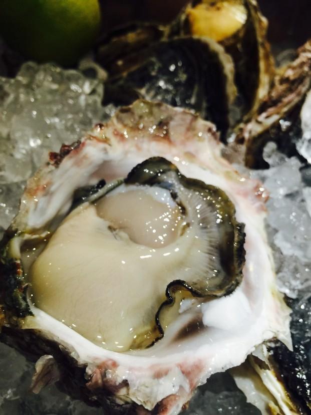 クマモト(岩牡蠣)