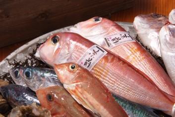 京丹後産鮮魚のバイヤーさんの話